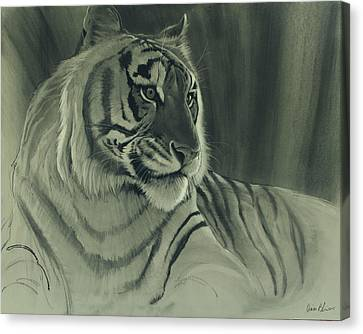 Tiger Light Canvas Print by Aaron Blaise