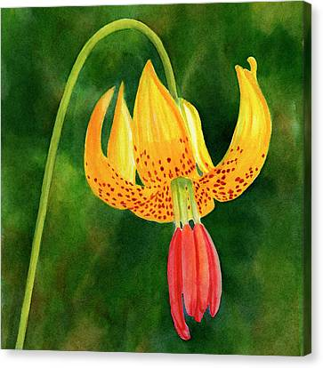 Tiger Lily Blossom With Background Canvas Print by Sharon Freeman