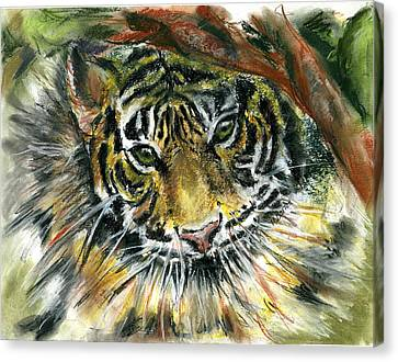 Canvas Print featuring the painting Tiger by Marilyn Barton