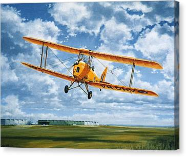 'tiger Moth - Wind Beneath My Wings' Canvas Print
