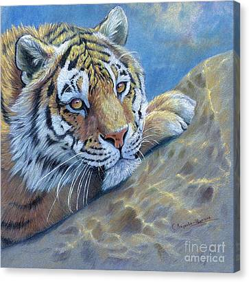 Tiger On The Rock Canvas Print