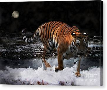 Canvas Print featuring the photograph Tiger On The Run by Jacqi Elmslie