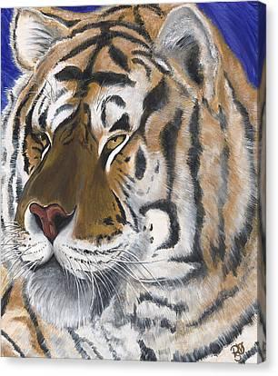 Tiger  Canvas Print by Patty Vicknair