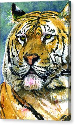 Tiger Portrait Canvas Print by John D Benson