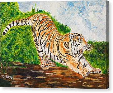 Tiger Stretching Canvas Print
