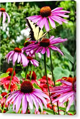 Coneflower Canvas Print - Tiger Swallowtail On Coneflower by Susan Savad