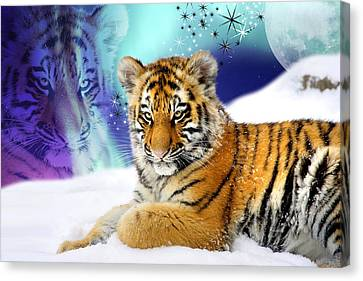 Tiger Treasures Canvas Print by Julie L Hoddinott