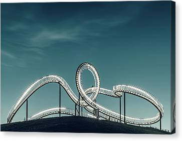 Tiger Versus Turtle. Canvas Print by Mibo Photography
