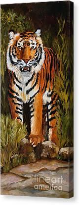 Tiger Wildlife Art Canvas Print by Mary Jo Zorad