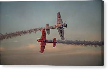 Tiger Yak 55 Canvas Print