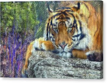 Tigerland Canvas Print by Michael Cleere