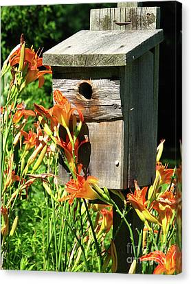 Tigerlily House Canvas Print