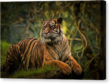 Canvas Print featuring the photograph Tigers Beauty by Scott Carruthers