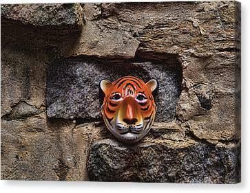 Tigers Den Canvas Print by Jeff  Gettis