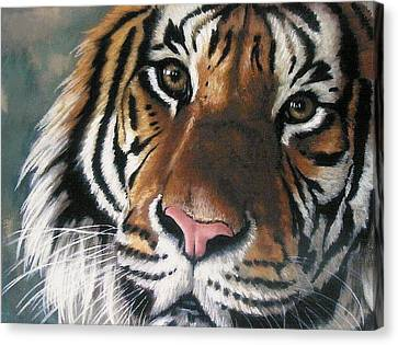 Canvas Print featuring the pastel Tigger by Barbara Keith