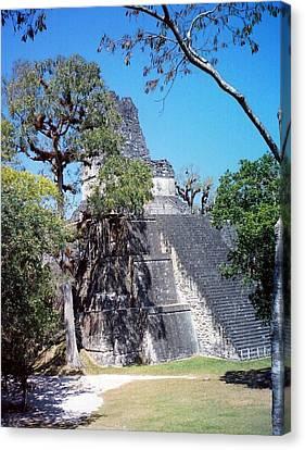 Tikal Iv Canvas Print