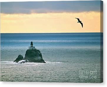Canvas Print featuring the photograph Tillamook Lighthouse by Suzette Kallen