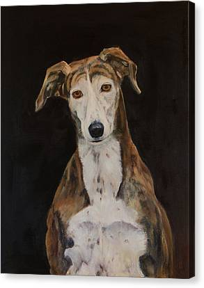 Rescued Greyhound Canvas Print - Tilly The Lurcher by Kathryn Bell
