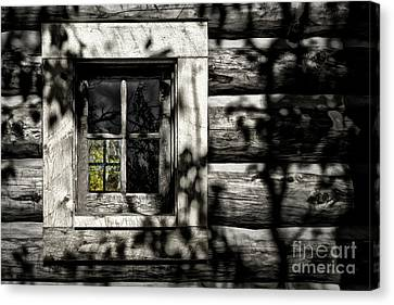 Canvas Print featuring the photograph Timber Hand-crafted by Brad Allen Fine Art