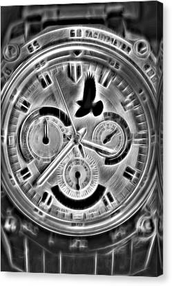 Time Flies Canvas Print by Terry DeLuco