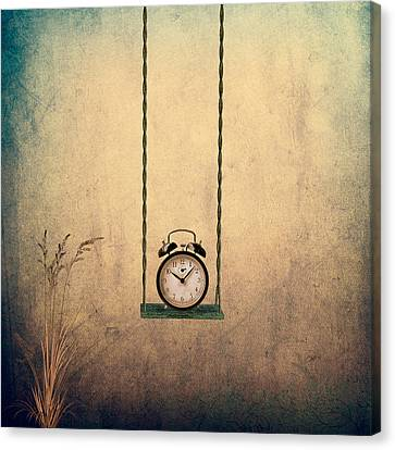 Timeless Canvas Print by Ian Barber