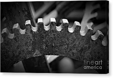 Canvas Print - Timeless In Monochrome by Chalet Roome-Rigdon
