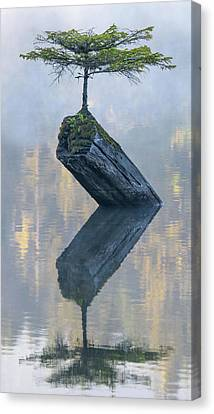 Timeless Tranquility Canvas Print by Keith Boone
