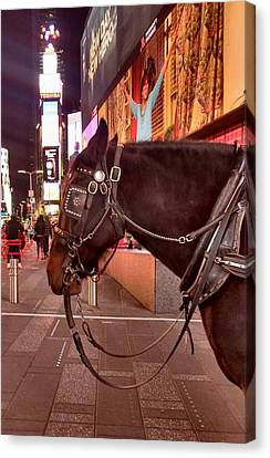 Times Square Horse Canvas Print by Bruce Lennon