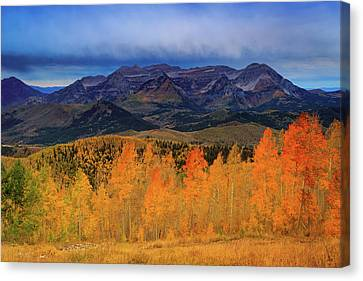 Canvas Print featuring the photograph Timpanogos With Golden Aspens. by Johnny Adolphson