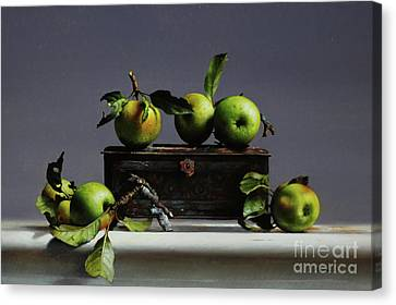 Tin With Wild Apples Canvas Print