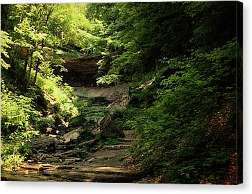 Tinkers Falls Labrador Hollow New York In July Canvas Print by Thomas Woolworth