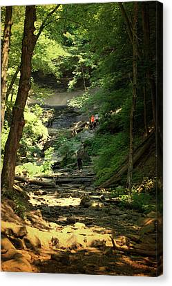 Tinkers Falls Labrador Hollow New York Textured Vertical Canvas Print by Thomas Woolworth
