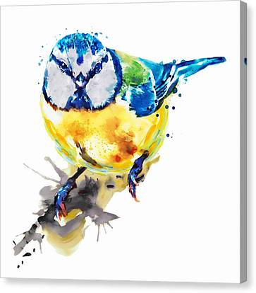 Tiny Colorful Bird Canvas Print by Marian Voicu