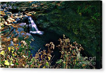 Canvas Print featuring the photograph Water Falls by Raymond Earley