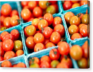 Tiny Little Red Tomatoes Canvas Print by Todd Klassy