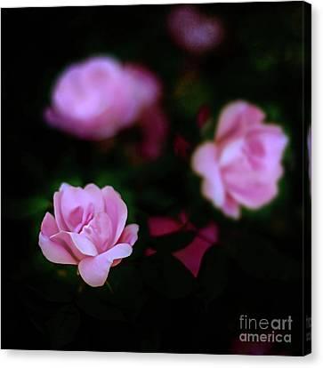 Canvas Print - Tiny Pink Azaleas by Tamyra Ayles