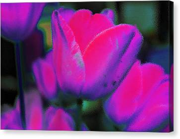 Tip Toe Canvas Print by Marnie Patchett