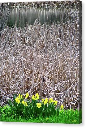 Granger Of Spring Life Canvas Print - Tipping Into Spring by Debra     Vatalaro