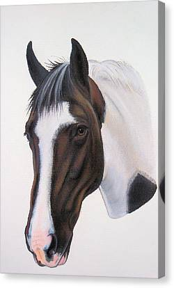 Tippy Canvas Print by Lucy Deane