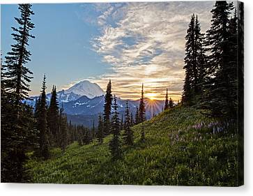 Tipsoo Field Of Summer Canvas Print