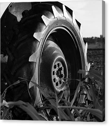 Tire Canvas Print by Gina  Zhidov