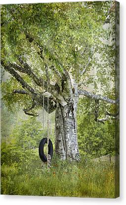 Tire Swing Hanging Off A White Birch Canvas Print by Betty  Pauwels