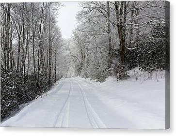 Tire Tracks In Fresh Snow Canvas Print