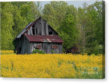 Canvas Print featuring the photograph Tired Indiana Barn - D010095 by Daniel Dempster
