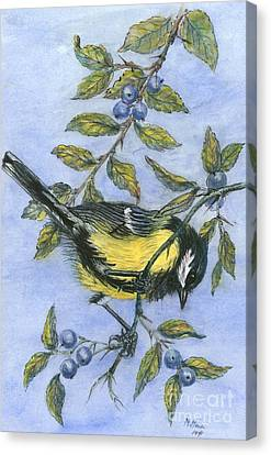 Tit In Blackthorn And Sloe Canvas Print by Nell Hill
