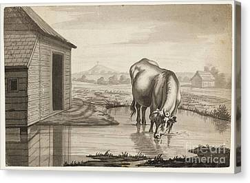Title A Cow Standing In A Pool Beside  Canvas Print by MotionAge Designs