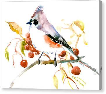 Titmouse Canvas Print by Suren Nersisyan