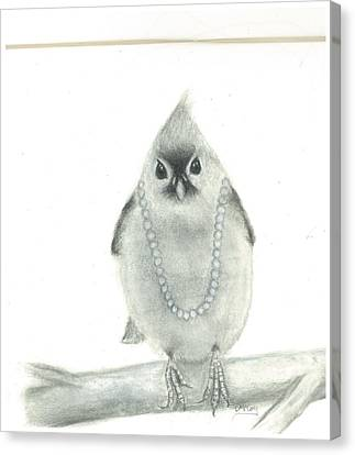 Titmouse With Pearls Canvas Print by Danielle McCoy