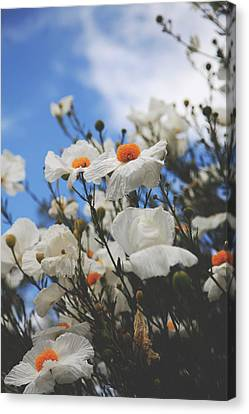 Blooming Trees Canvas Print - To Feel Your Love by Laurie Search
