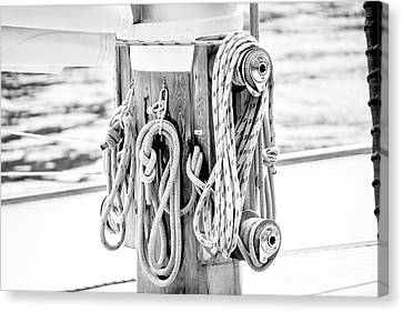 Canvas Print featuring the photograph To Sail Or Knot by Greg Fortier